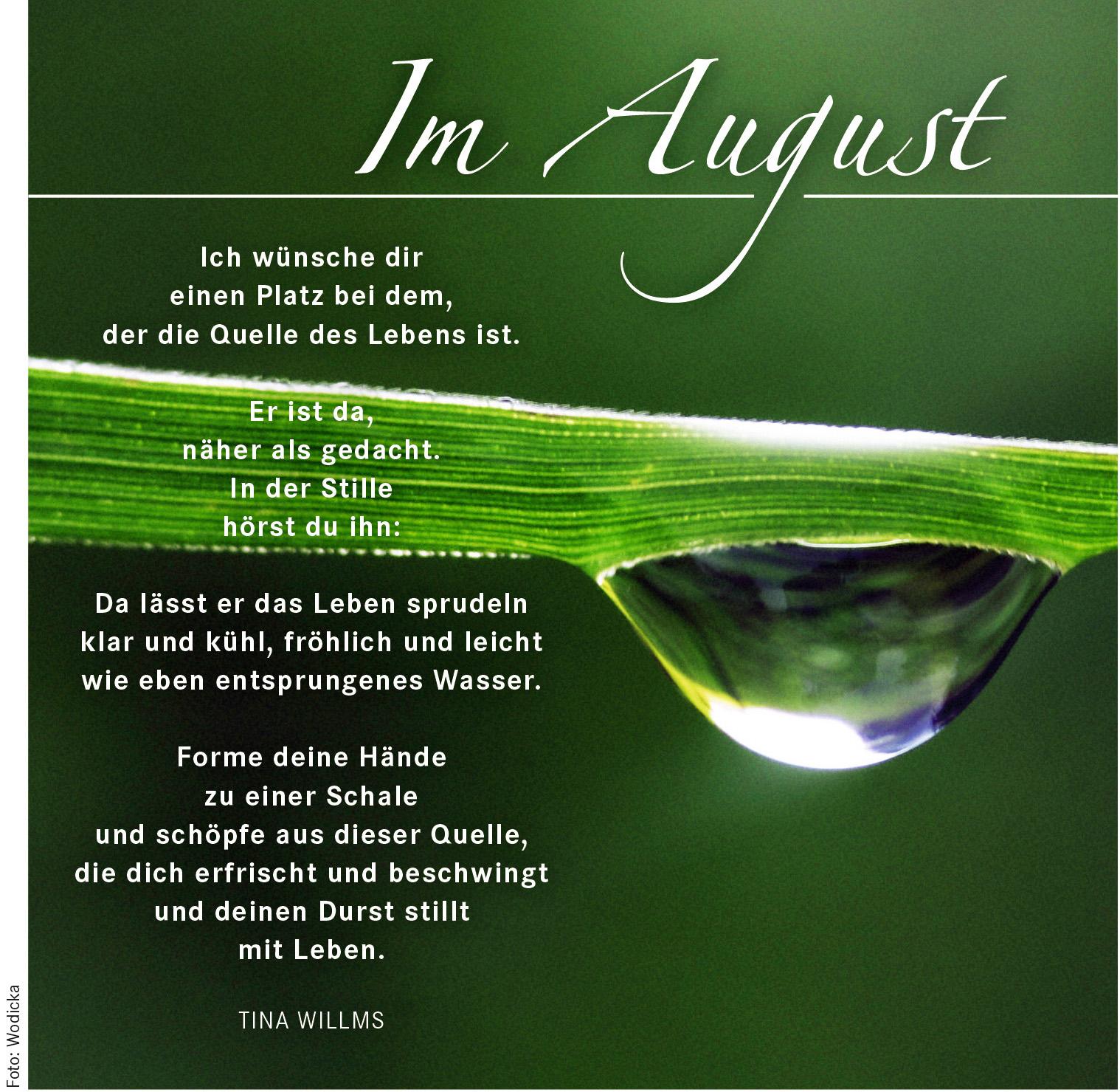 Spruch-08 Im August 165_3801_rgb